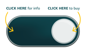 Amazon Dash Button, SEO Voice Search, Consumer Behavior