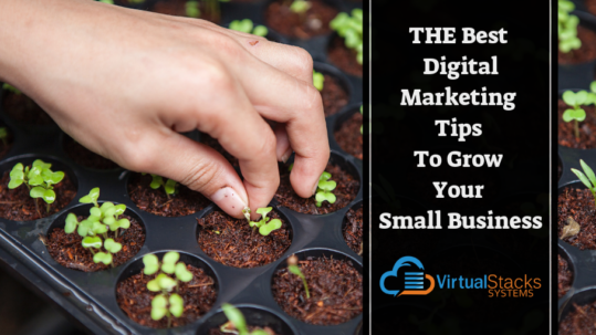 Digital Marketing Tips, Small Business Tips, How to Build a Business