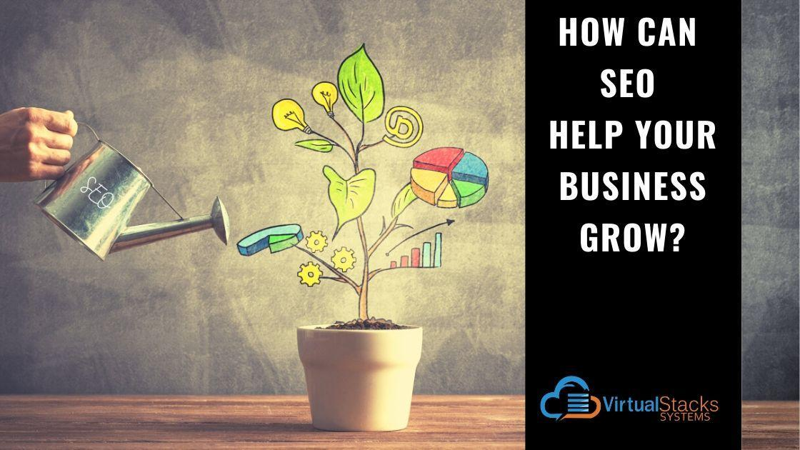 VS SEO Business Grow